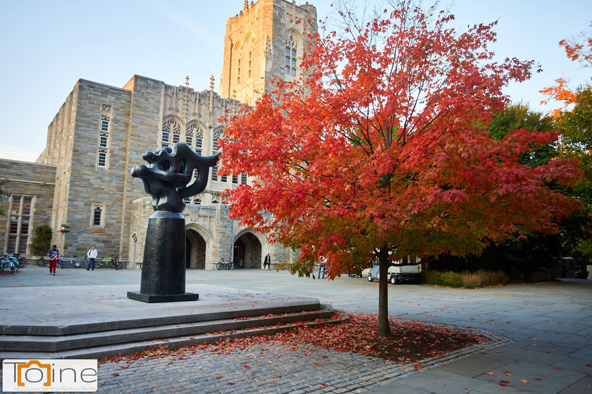 This sculpture next to the tree with the beautiful fall colors at Princeton University really caught my eye