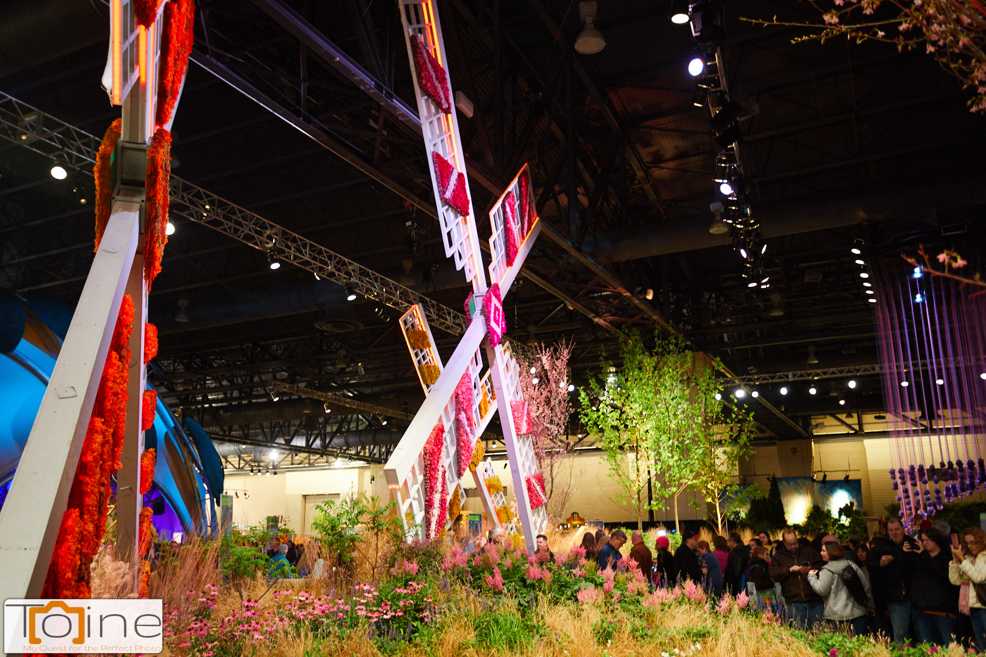 Philadelphia Flower Show – Photography by Toine: My Quest